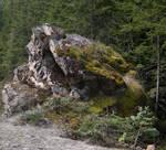 STOCK - Big Cool Rock 1