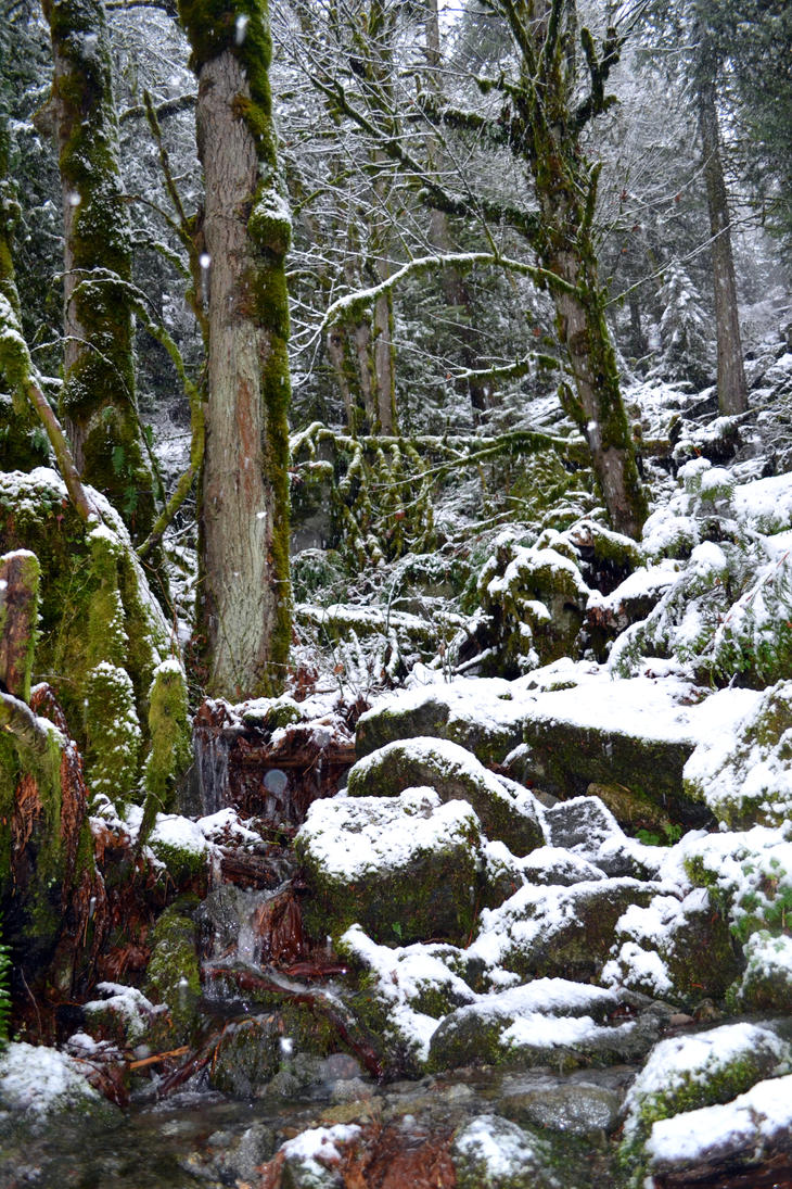 STOCK - Winter Falls 1 by jocarra