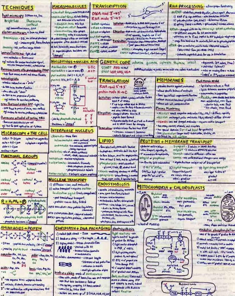 Chem grade 11 exam notes Term paper Example