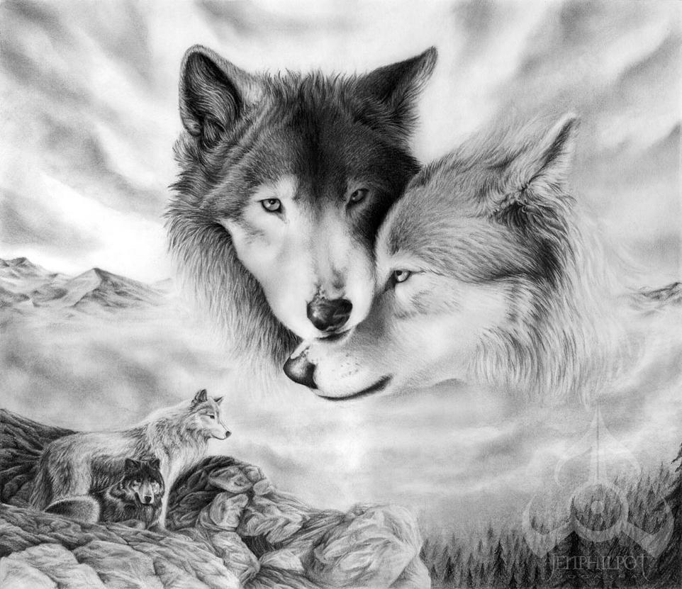 Vlci kresba ceruzkou