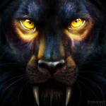 Commission - Night Eyes