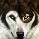 Commission - Beast of Balance