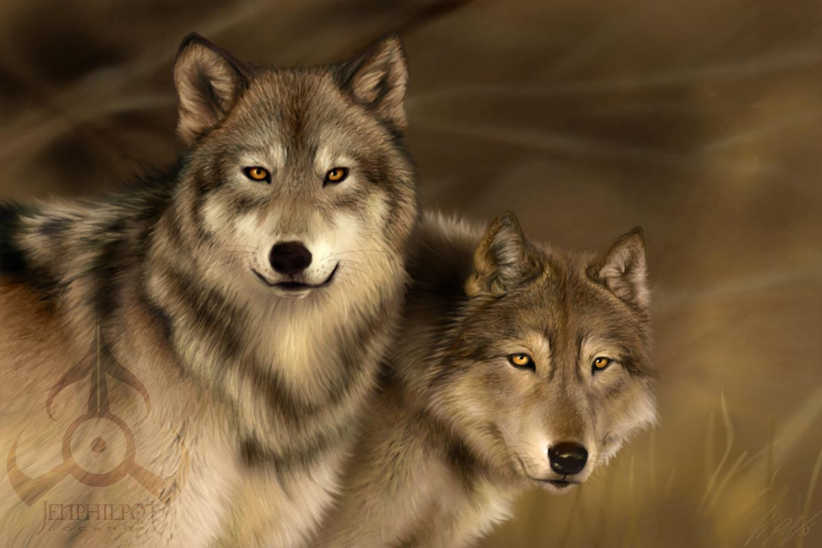 Wolf Mates III by joca...