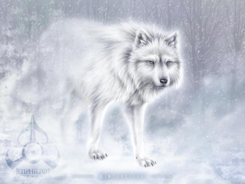 COMMISH: WinterSpirit by jocarra
