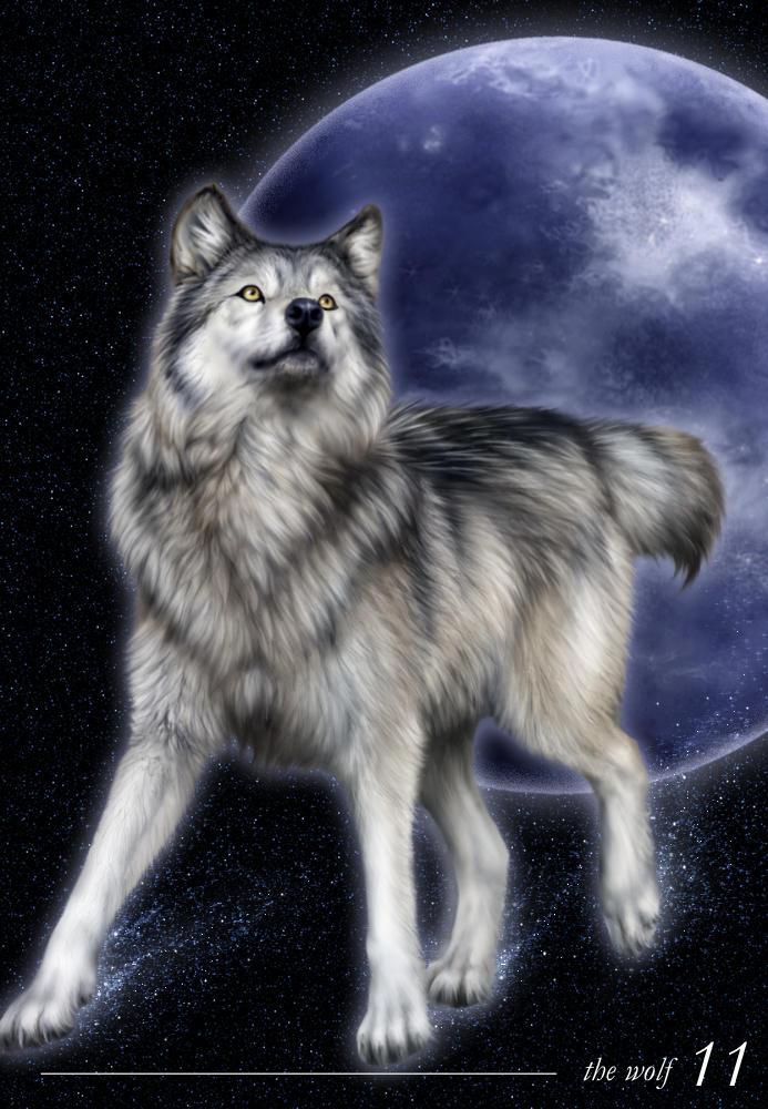 Wolf Tarot Version By Jocarra