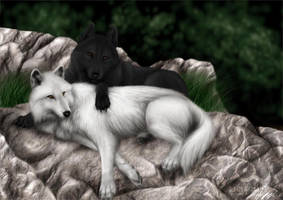 COMMISH: Wolf Mates IV by jocarra