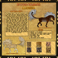 Equus-Felidae -Medium