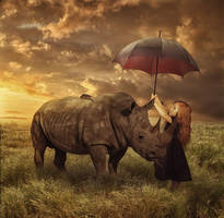 safe the animals by gestandene