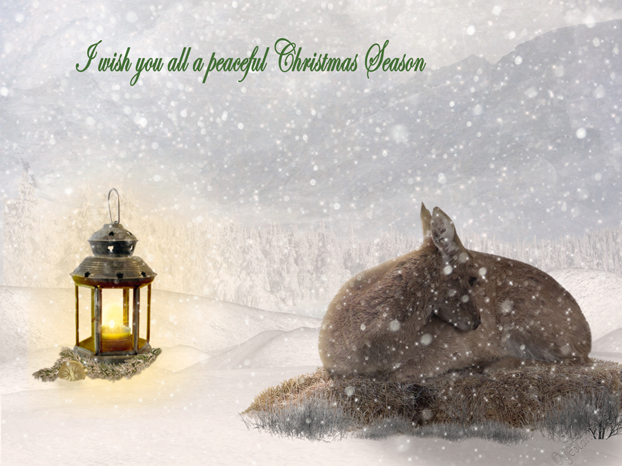 Christmastime by gestandene