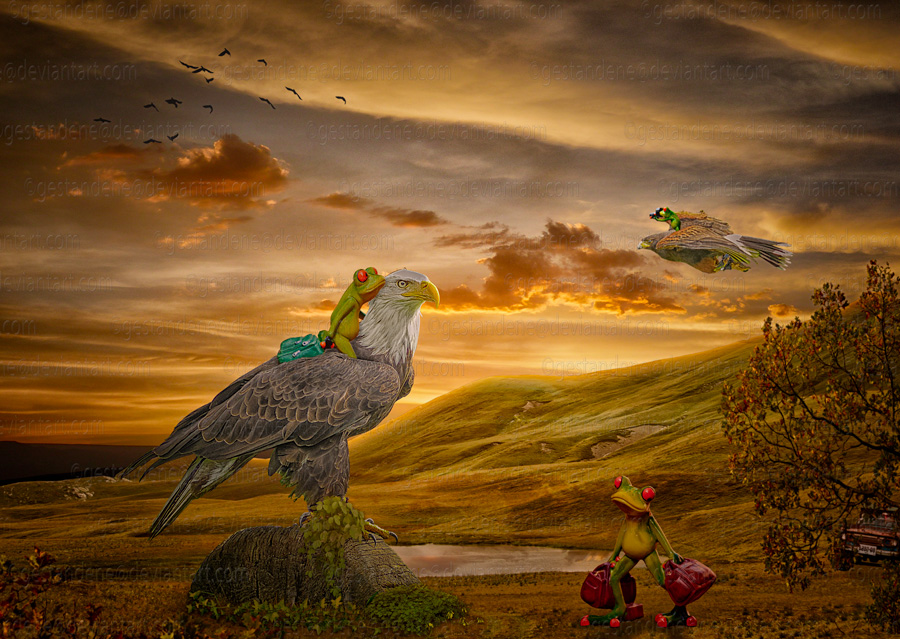 Fly away by gestandene