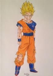 Ascended Super Saiyajin Goku :)
