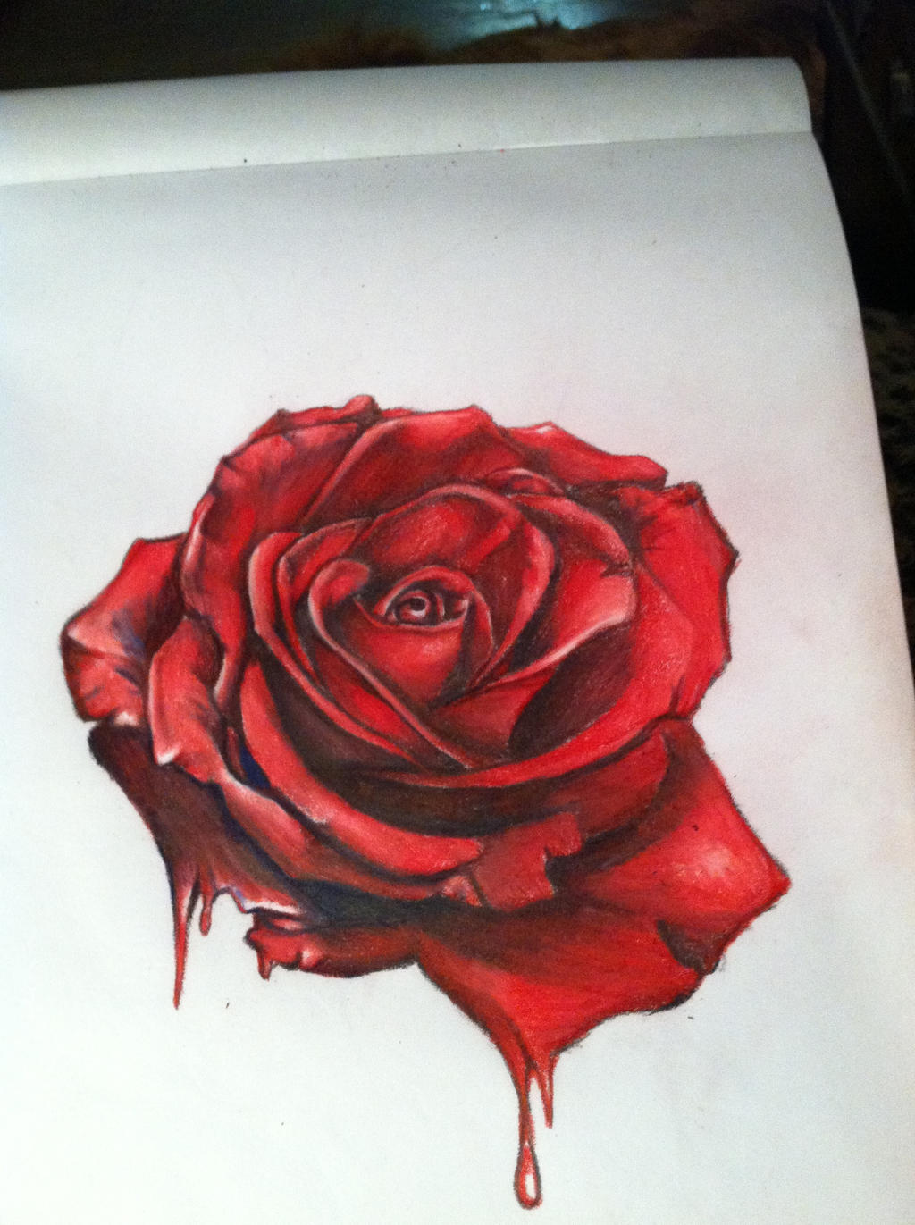 Realistic Red Rose Drawing