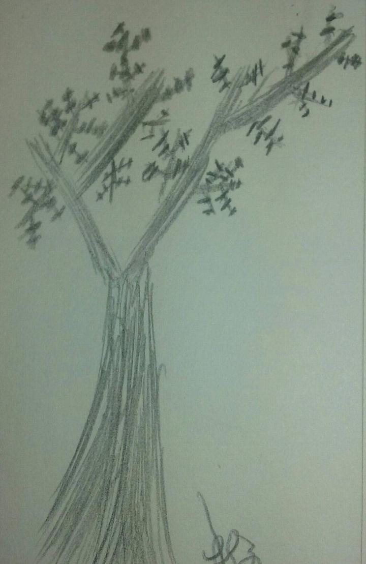 Tree by turtleopp