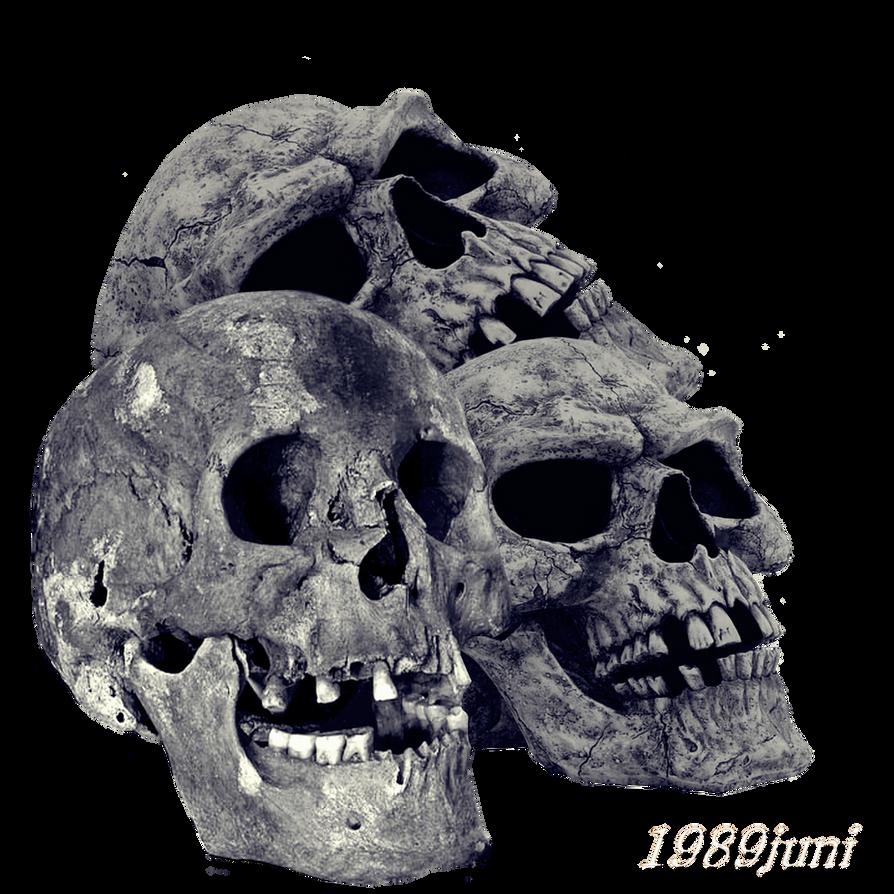 Skull Stock 1 by 1989juni