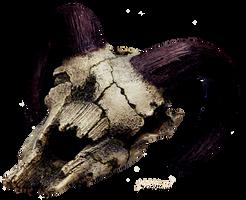 Skull stock 3 by 1989juni
