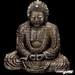 Budda Stock 2