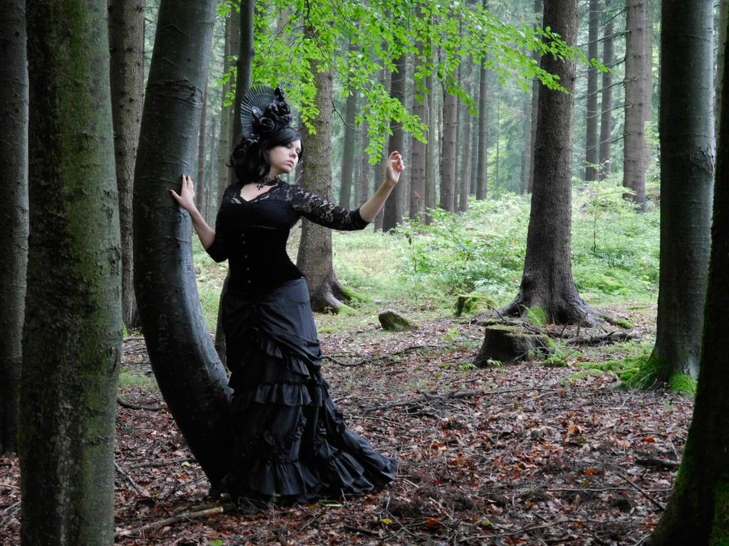 Forest 1 -Stock by Rosenrot-Photography