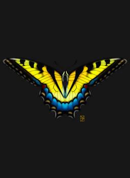 Dandelion Wings