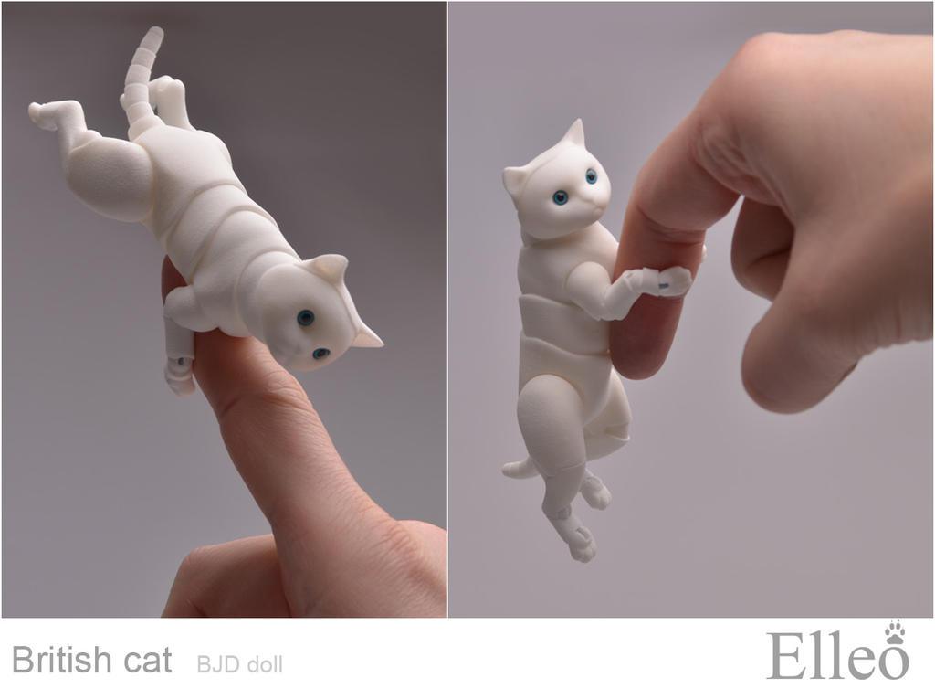 British cat bjd doll by leo3dmodels