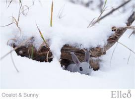 Ocelot Bunny Bjd 01