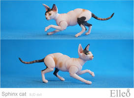 Sphinx bjd cat 07 by leo3dmodels