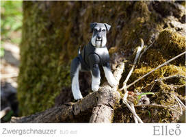 Zwergschnauzer 01 by leo3dmodels