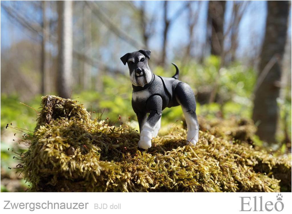 Zwergschnauzer 03 by leo3dmodels