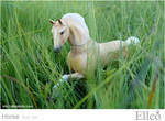 Horse bjd doll 11
