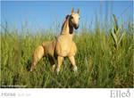 Horse bjd doll 13