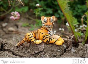 Tiger Bjd Doll 01