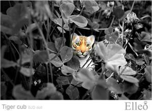Tiger Bjd Doll 02