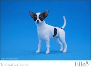 Chihuahua Bjd Doll 02