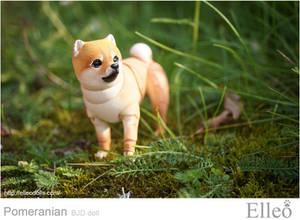 Pomeranian bjd doll 06