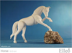Horse bjd doll 02