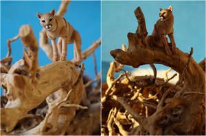 Cougar Bjd Doll 13