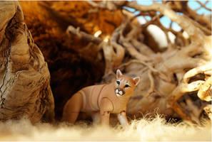 Cougar Bjd Doll 16