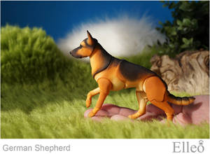 German Shepherd bjd doll 01