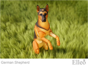 German Shepherd bjd doll 05