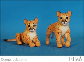 Cougar Cub Bjd Doll 03