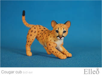 Cougar Cub Bjd Doll 04