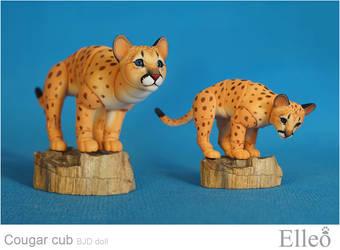 Cougar Cub Bjd Doll 05