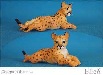 Cougar Cub Bjd Doll 07