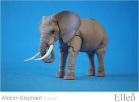 African elephant bjd doll 13