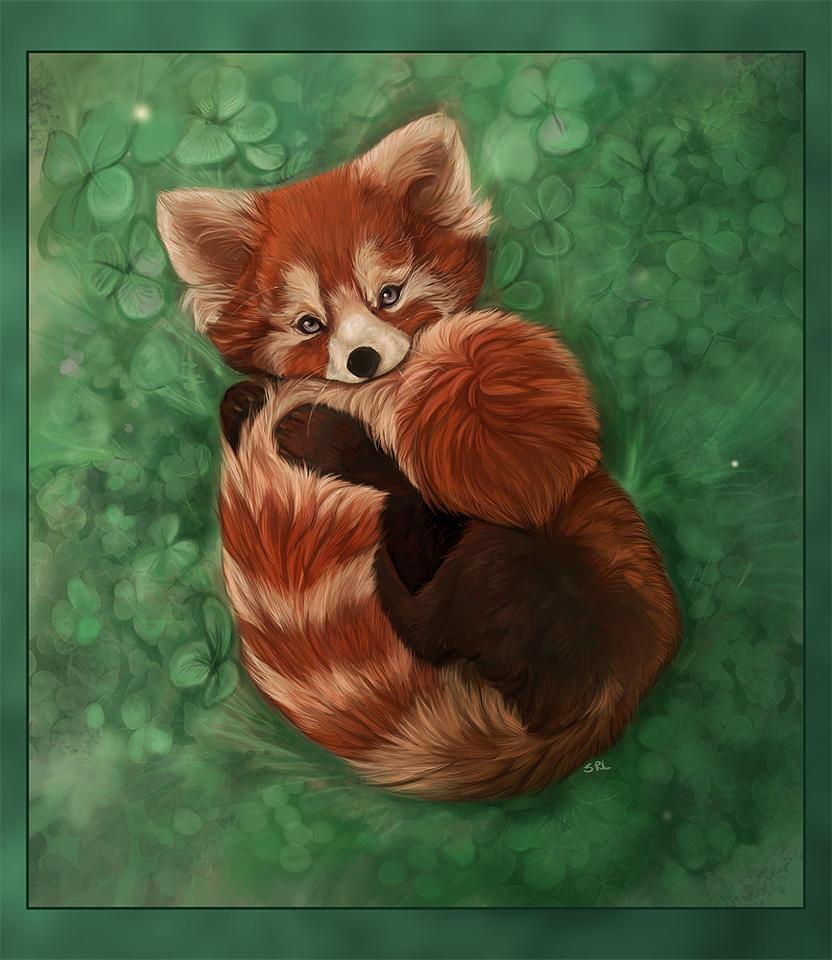 SOP entry-Red Panda by daisy7 on DeviantArt