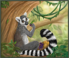 Ring-Tailed Lemur by daisy7