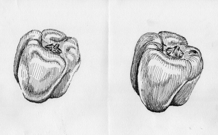Contour Line Drawing Fruit : Bell pepper and by experimettle on deviantart