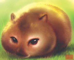 Wombat by faboarts