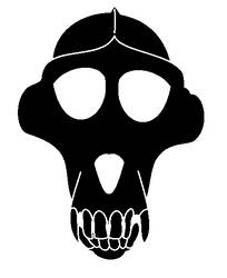 Baboon skull, Mark of the Pirate, base.
