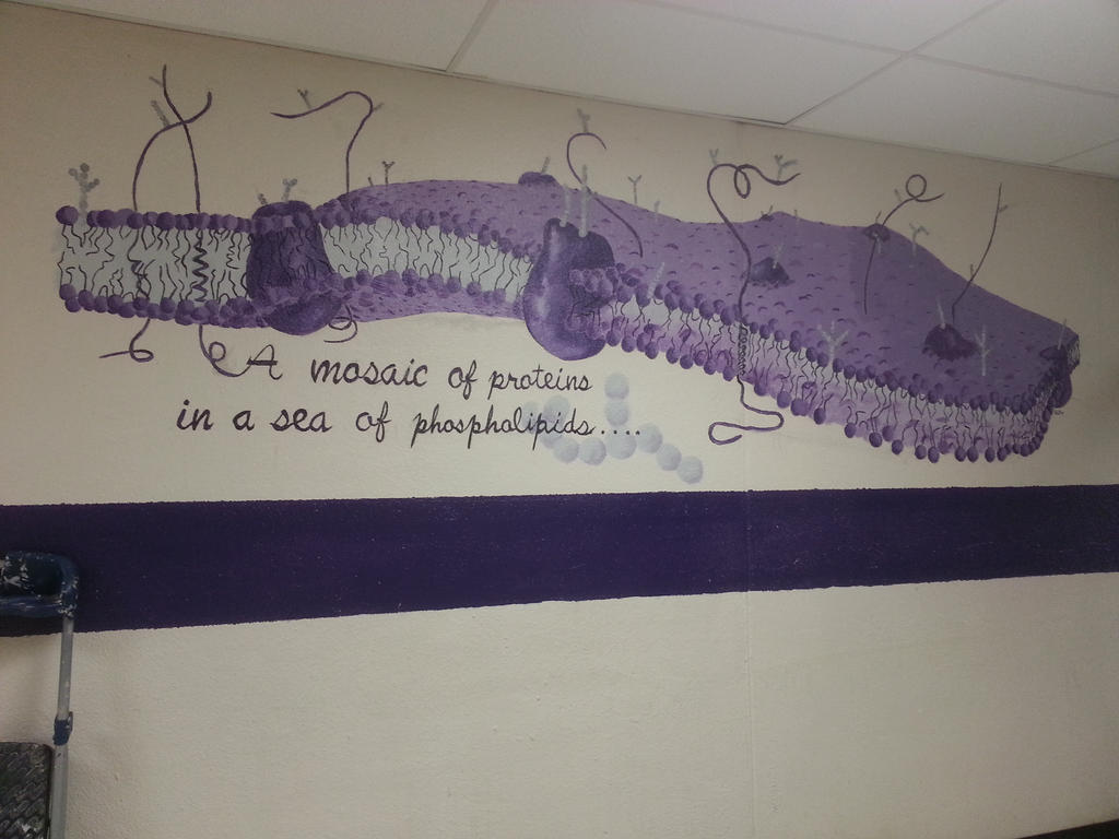 Phosopholipid Bilayer Mural by Ayanami-The-Nuff