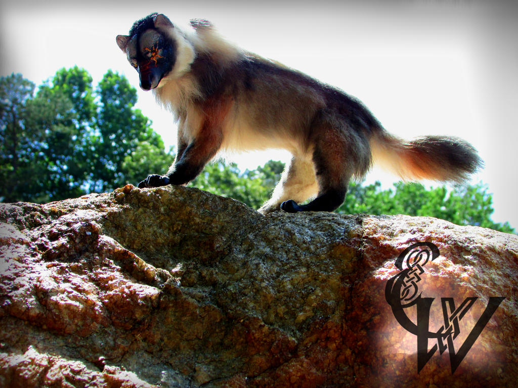 SOLD! Skoll The Prehistoric Wolf-Art Doll by Celtic-Wicca on